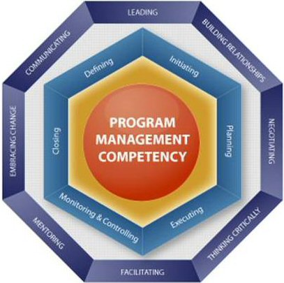 Image result for The Levin-Ward PgM Competency Model, quality management